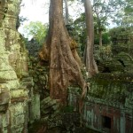 Angkor33