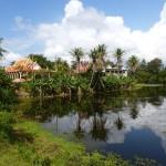 Angkor49