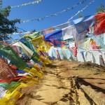 Thimphu28