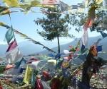 Thimphu29