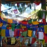 Thimphu33