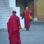 Thimphu40