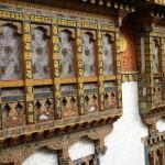 Punakha Gangtey15