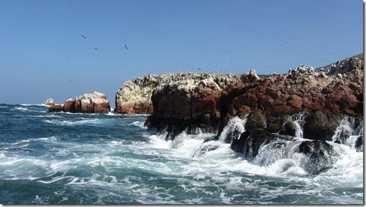 Paracas - Tour zu den Ballestas