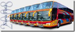 flota_buses