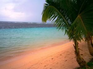 Unterwasser zunächst nur Sand, dann Korallen - Auf zum Schnorcheln!