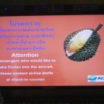Zurück in Asien: Die Vielfalt Malaysias