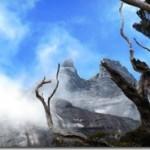 Unter Affen und über den Wolken