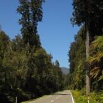 Straßenbild Südinsel