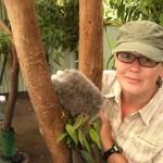 süsses Koalaknäuel