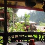 Blick vom Guesthouse-Restaurant in Bukit Lawang