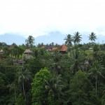 In der Naehe von Ubud