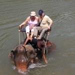 kurz bevor sich der Elefant auf die Seite legte…