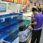 Papi beim Fische fangen im Supermarkt (Kunming – Wal-Mart)