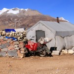 typisches tibetisches Normadenzelt