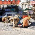 Udaipur – solche Arbeiten duerfen in Indien Frauen machen