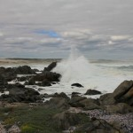 Langebaan: West Coast National Park