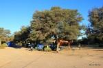 Im Kgalagadi Transfrontier Park – Mata Mata Camp
