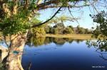 Fluss vor unserem Hostel in Maun
