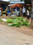 Zanzibar – Das Bananenmasaker
