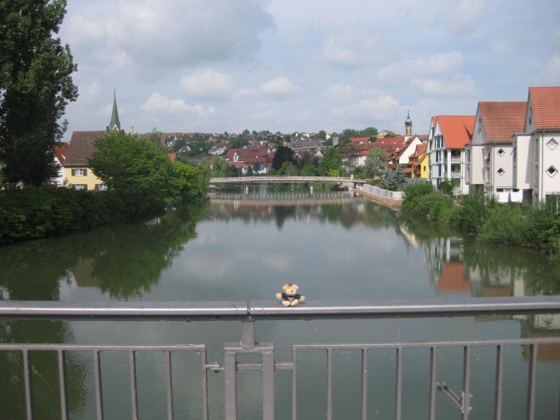 Der Neckarbär vor der schönen Neckarkulisse in Rottenburg
