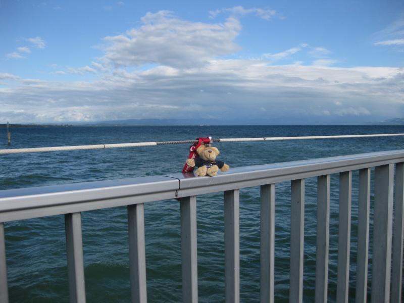 Am Ufer des windigen, schwäbischen Meeres vor Immenstaad