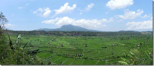 Reisterrassen in Balis Osten