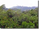 Aussicht von unserer Mountain Lodge