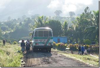 Fiji Bus