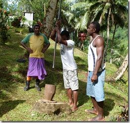 Kava - Produktion